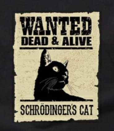 Wanted Posted of Schrodingers Cat saying Wanted Dead AND Alive