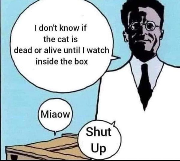 Schrodinger Telling Cat to stop Miaowing